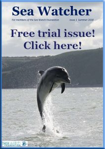 This image has an empty alt attribute; its file name is SeaWatcherFreeTrial-212x300.jpg